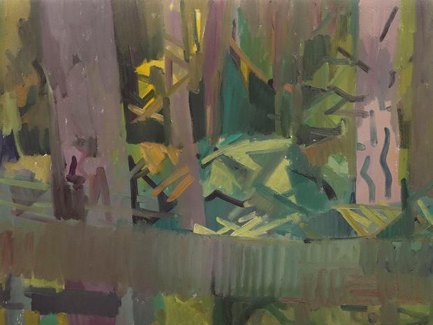 Doug Fir Forest, Fall