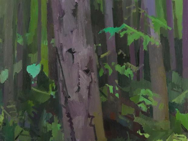 Doug Fir Forest, Purple