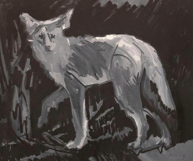 Coyote Tonal