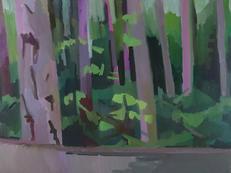 Doug Fir Forest, Pink