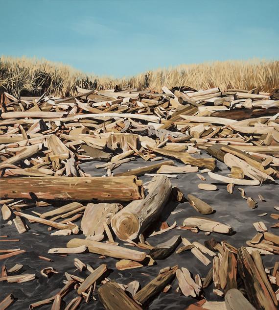 Driftwood #7