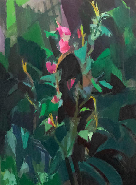 Camellias in the Forest