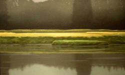 Palix River Marsh_