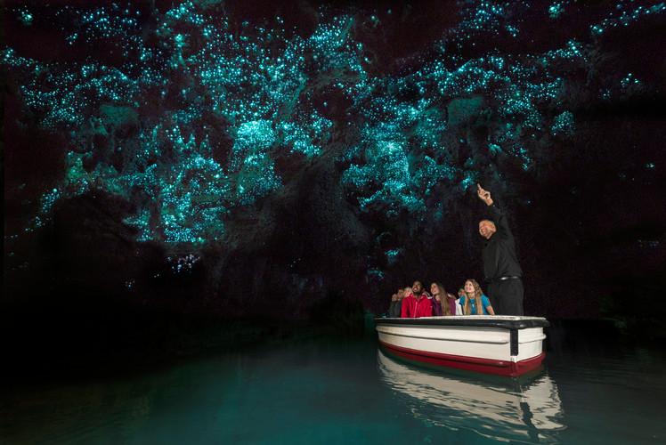 Glowworm-Caves-5.jpg