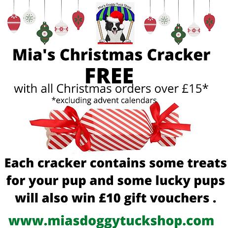 Mia's Christmas Give-Away (1).png