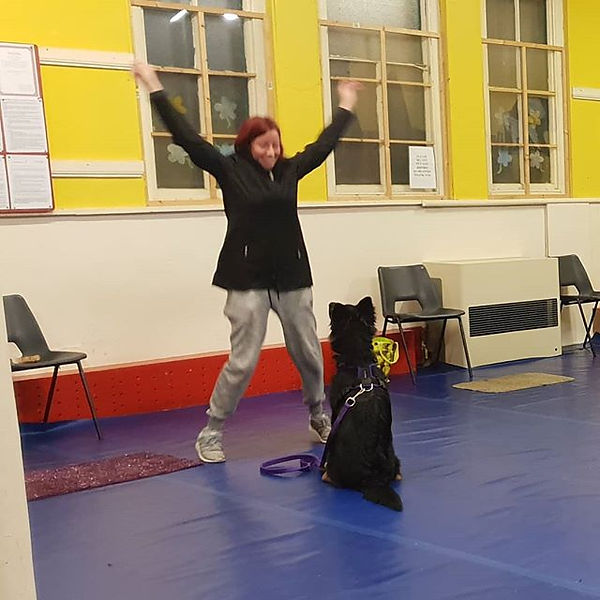 Puppy Class last night had great giggles