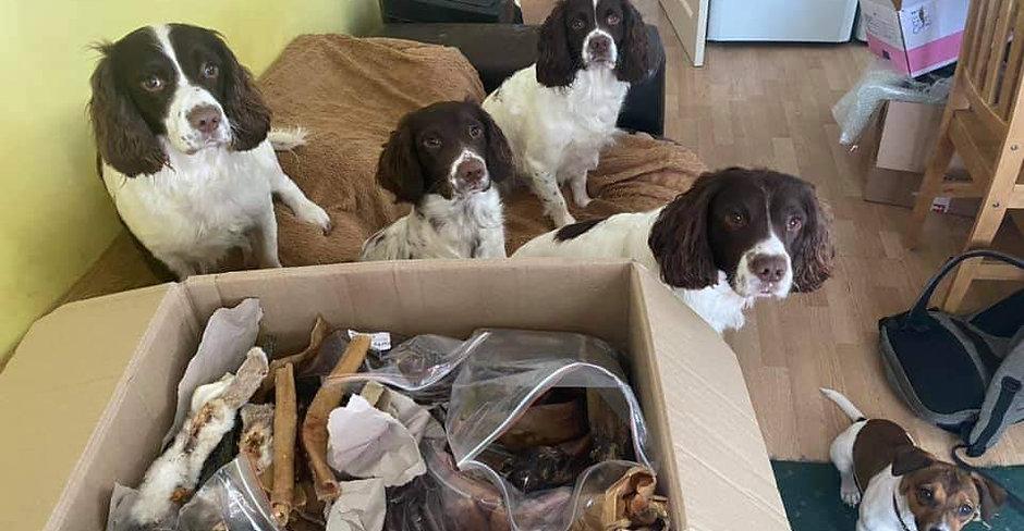 Natural Treats and Chews Selection Box