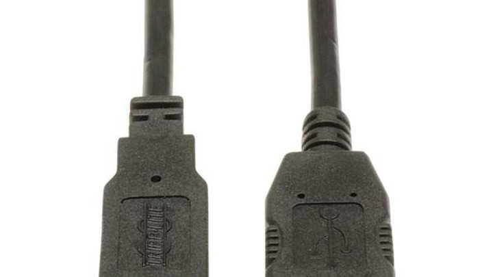 USB EXT CABLE 10 FT
