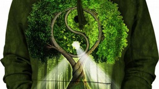 YIN YANG TREE HSW - L