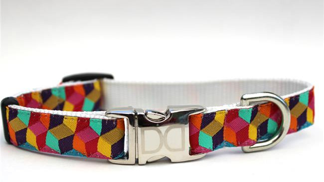 Block Party Bright Dog Collar XS/S
