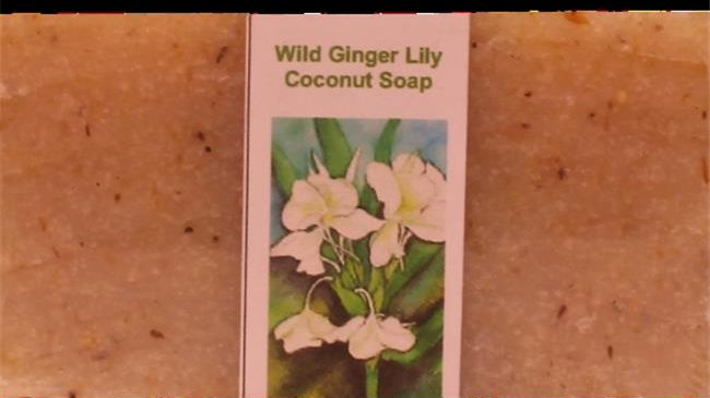 Volcanic Earth WGLCS 95 g Wild Ginger Lily Soap