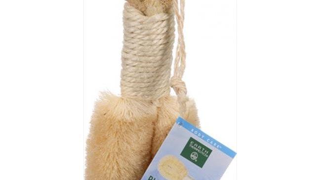 Earth Therapeutics Body Brush - Purest Palm