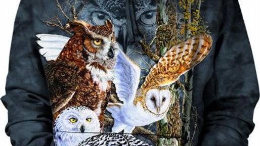 FIND 11 OWLS - HSW - M