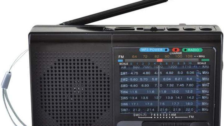 9 BAND BT/USB/SD RDIO BLK