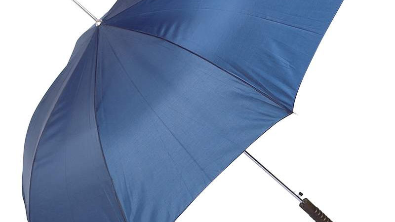 "ALL-WEATHER 48"" UMBRELLA-BLUE"