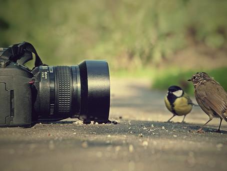Storytelling through the camera lens