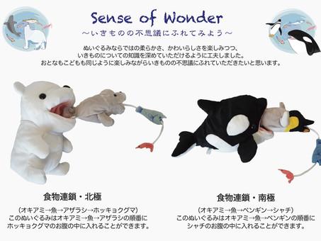 【12/18(金)放送のNHKニュース「おはよう日本」まちかど情報室内で、センスオブワンダーシリーズ 食物連鎖のぬいぐるみが紹介されました!】