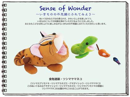 【「センスオブワンダーシリーズ 食物連鎖 ツシマヤマネコ」新発売のお知らせ】