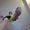 Thumbnail: Giant James Shrinks You