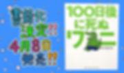S__43016231.jpg