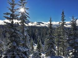 Mt Washington Nordic Views