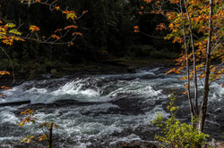 Stamp-River