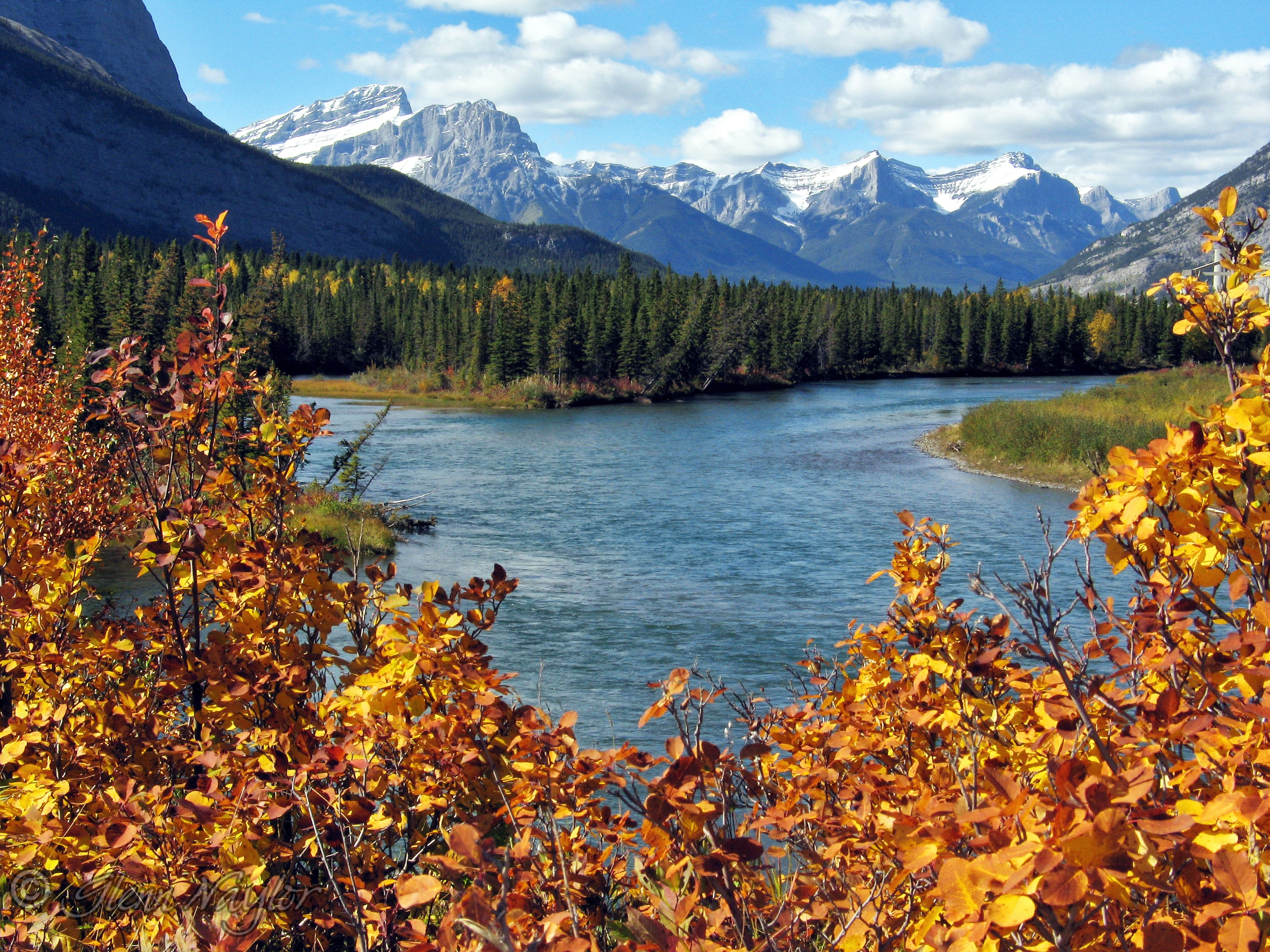 Bow River East of Canmore, Alberta