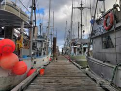 Fishermans-Wharf-Comox