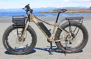 elec bikes.jpg