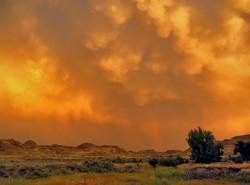 Storm passing by, Dinosaur Pv Pk, AB
