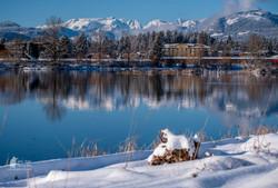 Courtenay-Winter