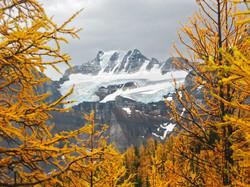 Mt Fay, Larch Valley. Banff Nat Park