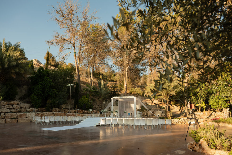 Gilad Mashiah-46.jpg