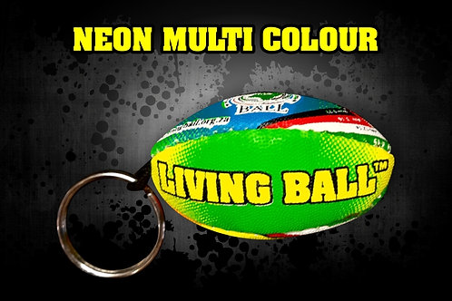 Rugby Keyring Holder