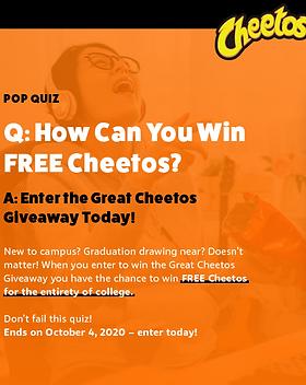 cheetos landing page-02.png