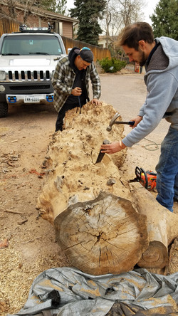 Carving the Stumps