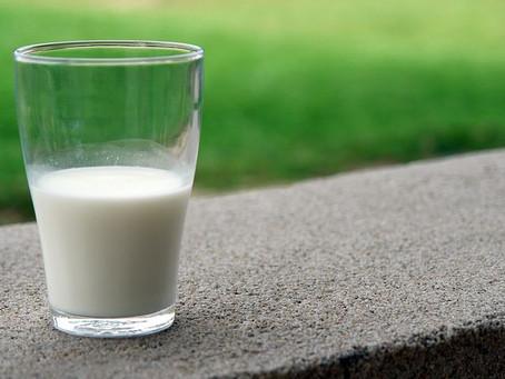 なぜ、肉、卵、乳製品は摂らない方がいいのか(1)
