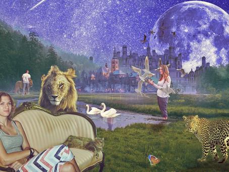 『WLMM 動物に親愛を送るための瞑想』(全てのものは繋がっている)