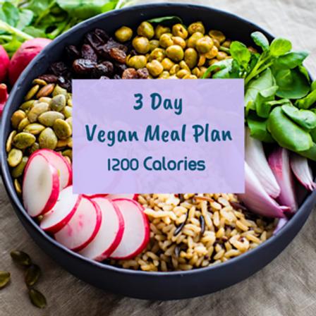 3 Day Vegan Meal Plan (1,200 Calories)
