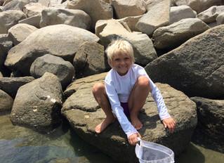 Fun Day at Kid's Cove
