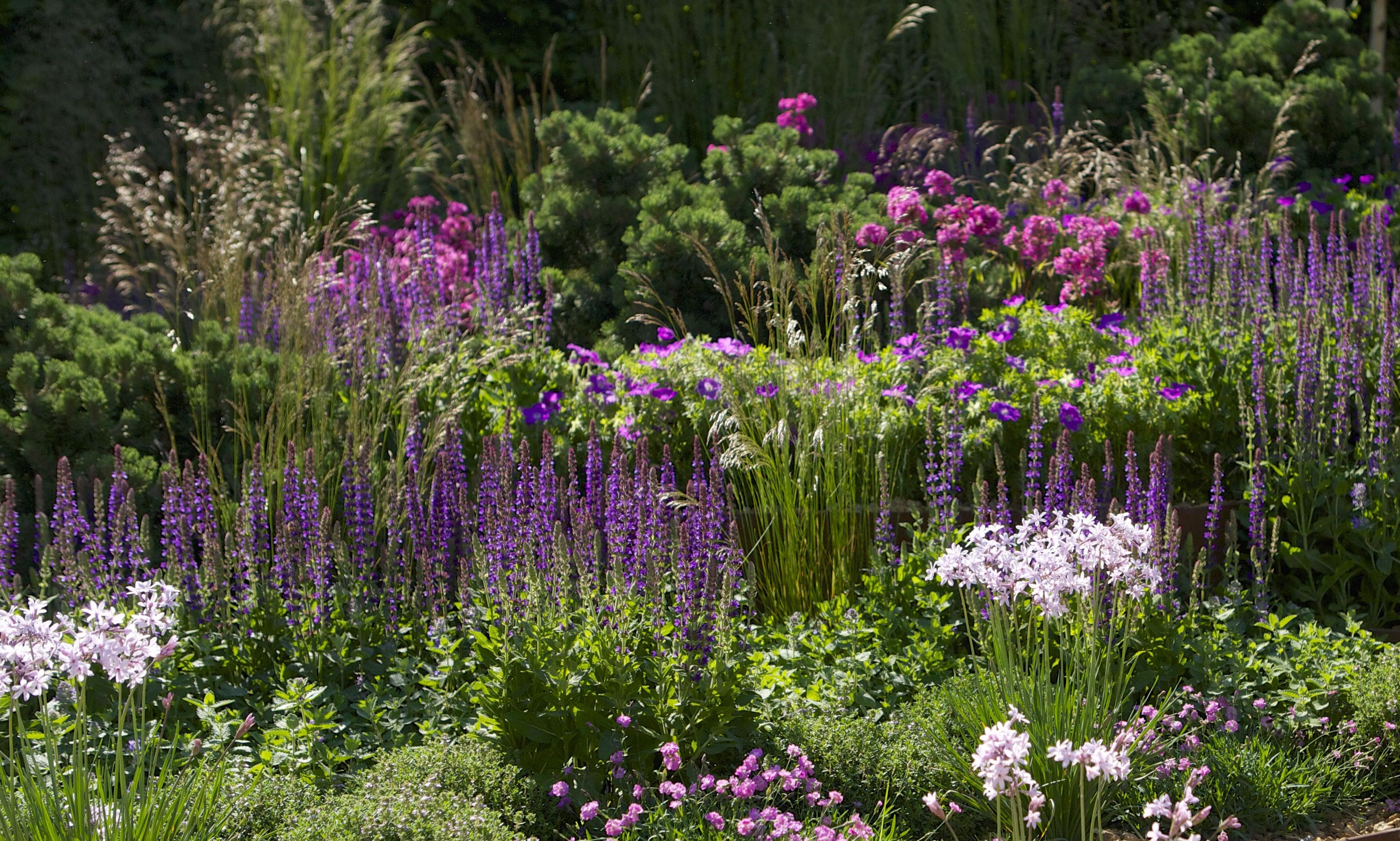 11 First Touch Garden 2014