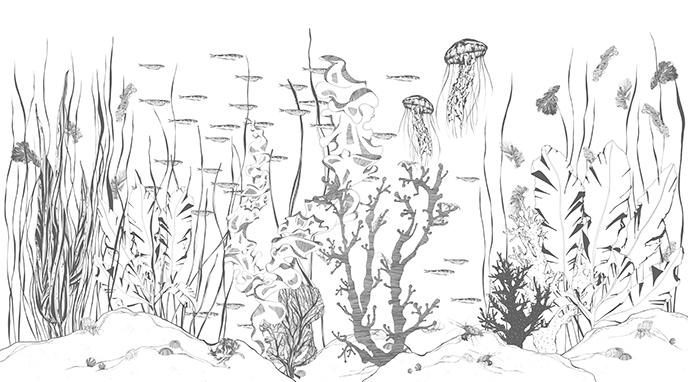 Papier Underwater