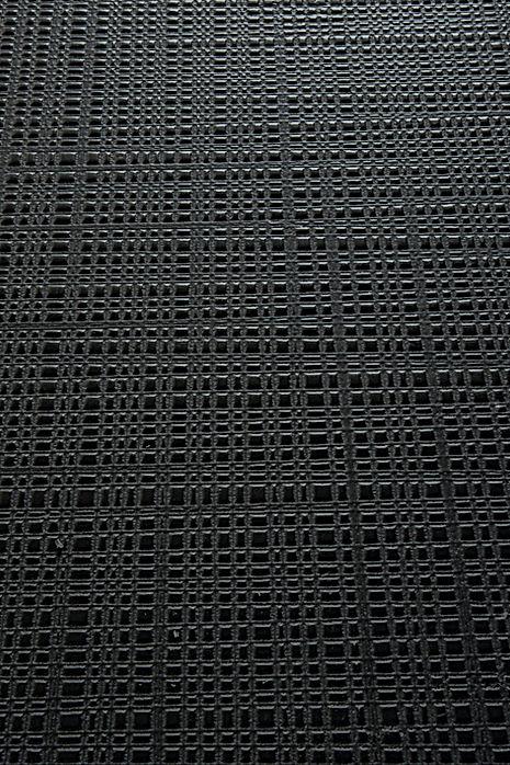 Reticula nero.jpg