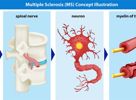 Belangrijke stappen onderzoek behandeling MS en alzheimer