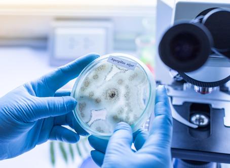 """Symposium """"Contaminant of Relevant?"""" over schimmelinfecties onder leiding van Paul Verweij"""