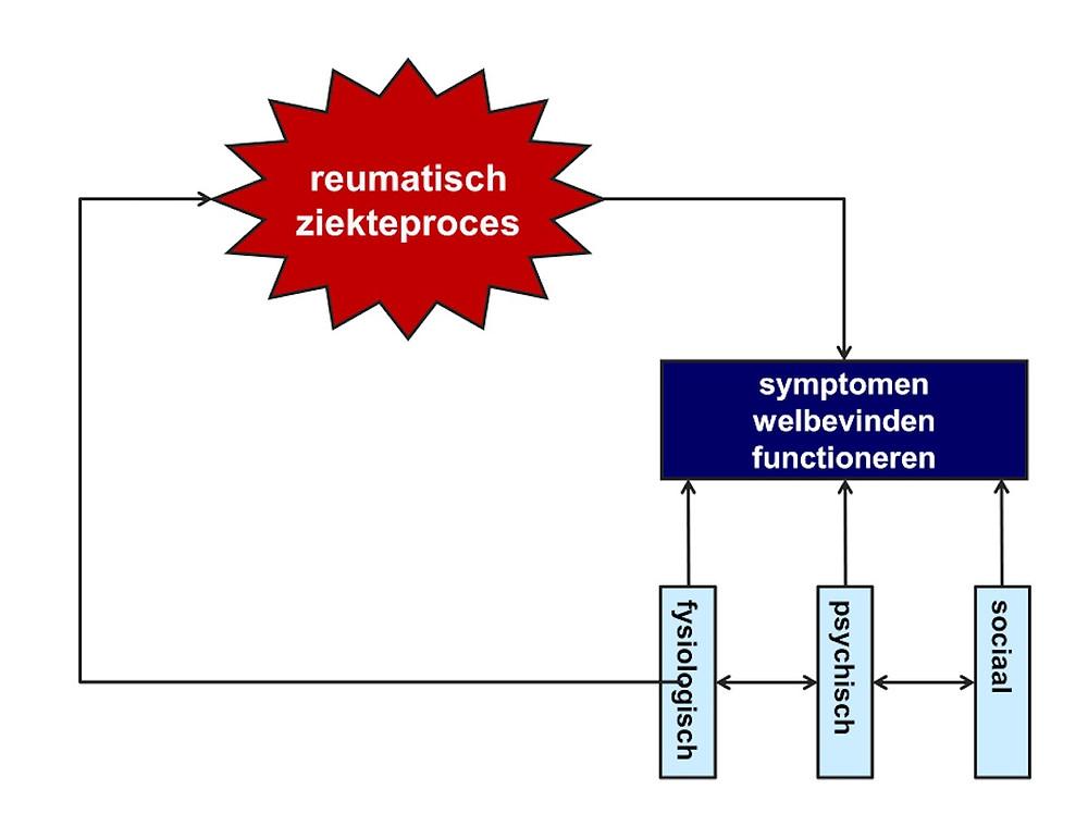 Een biopsychosociaal model van reumatoïde artritis