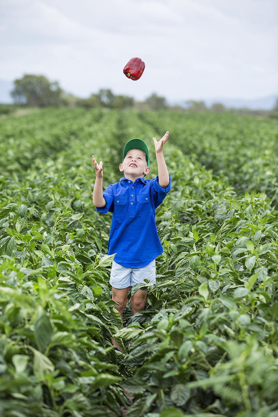 Rushel Farm Monsanto Commercial Marketing Photography