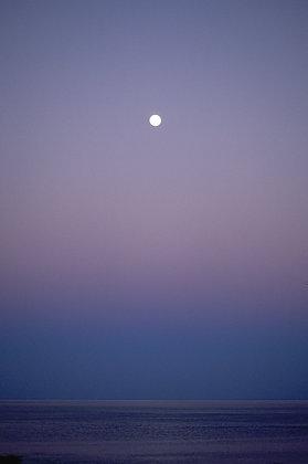 Kimberly Moons