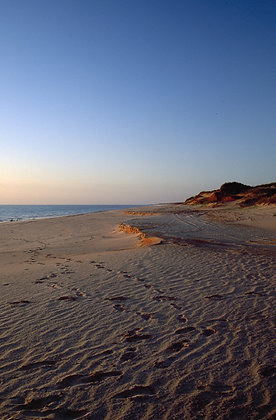 Footprints, Cape Leveque, Kimberly