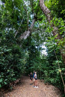 Rainforest Destination Commercial Marketing Photography